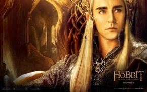 Picture elf, elf, The hobbit, The Hobbit, Mirkwood, Murkwood, Thranduil, The Hobbit: The Desolation Of Smaug, …
