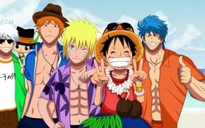 Picture game, Bleach, Naruto, One Piece, pirate, anime, crossover, Reborn, ninja, asian, Kurosaki Ichigo, manga, shinobi, …