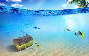 Picture fish, the ocean, chest, underwater world