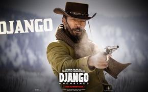 Picture movie, Django, django unchained