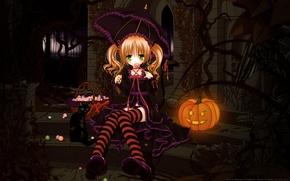 Wallpaper cat, umbrella, umbrella, art, candy, girl, pumpkin, Lollipop, Halloween, tinkerbell