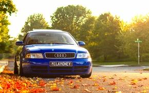 Picture autumn, Audi, Audi, foliage, before, blue, blue