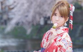 Picture look, Japanese, kimono, Asian, bokeh, Hanami Dango
