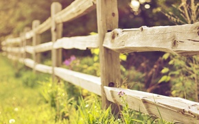 Wallpaper focus, bokeh, the fence, grass, nature, fence