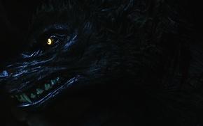 Picture darkness, werewolf, Skyrim, Skyrim, werewolf