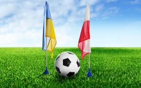 Picture wallpaper, sport, football, flags, Ukraine, ball, Poland