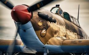 Picture fighter, war, Hawker Hurricane, interceptor, single, world, Second, times, XIIA