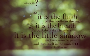 Picture life, green, glare, background, Wallpaper, quote