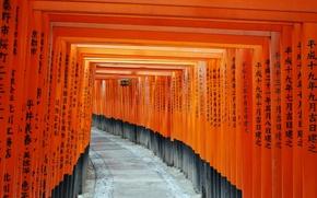Picture Japan, temple, Kyoto, Fushimi Inari