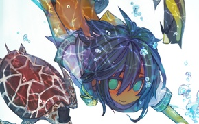 Picture girl, fish, bubbles, turtle, anime, art, under water, hats, ukai saki