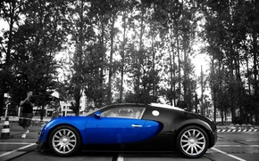 Wallpaper color, Veyron, contrast, Bugatti