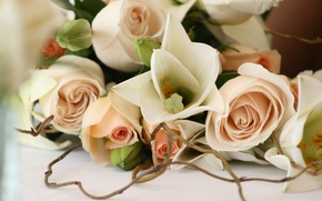 Wallpaper flowers, romance, roses, beautiful, wedding