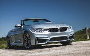 Picture BMW, BMW, convertible, Cabrio, F83