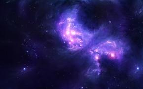 Wallpaper space, light, stars, galaxy, space, light, stars, 2560x1600, galaxy