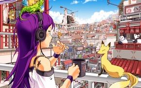 Picture the city, morning, Fox, Panda, mug, balcony, cleans