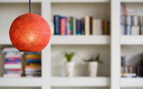 Picture flowers, books, lamp, ball, shelves