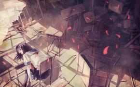 Picture chairs, petals, dump, class, schoolgirl, sitting, desks, sailor