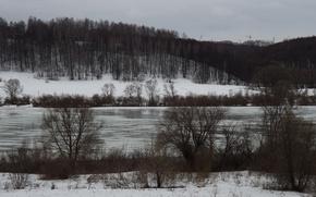 Picture snow, trees, ice, spring, Oka, Kaluga