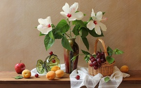 Picture flowers, Apple, grapes, vase, still life, basket, apricots, hibiscus