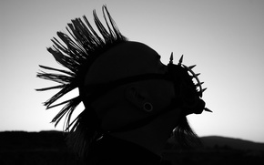 Wallpaper Pablo Wallpaper by upondeathwish, Mohawk, beard, spikes, tunnels, the muzzle, Punk