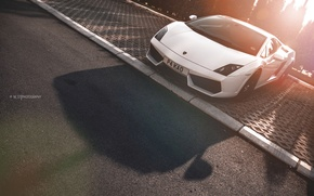 Picture road, the sun, trees, street, shadow, Lamborghini, border, white, before, summer, white, Gallardo, the sidewalk, …