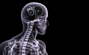 Picture people, skeleton, gear, x-ray, brain, black background