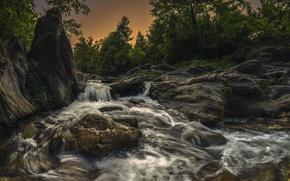 Picture Fium'Altu, France, France, trees, river, Corsica, Corsica, Castagniccia, river, stones