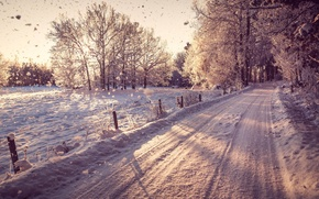 Picture winter, road, forest, snow, trees, landscape, nature