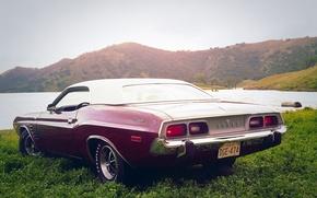 Wallpaper car, Muscle, Dodge, Challenger