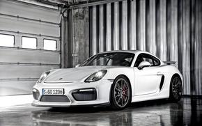 Picture Porsche, Cayman, Porsche, GT4, 2015, Caiman