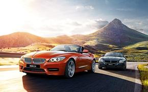 Picture 2015, E89, BMW, BMW