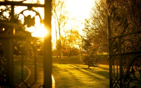Picture greens, grass, leaves, the sun, rays, trees, nature, background, Wallpaper, mood, the fence, blur, gate, …