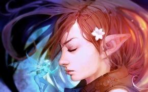 Picture figure, fairy, art, Fantasy, elf, elf