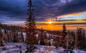 Picture snow, tree, mountains, nature, winter, trees, Norway, hills, the sun, the sky, valley, landscape, sunset