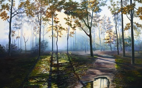 Picture road, forest, water, landscape, Park, lights, dawn, trail, picture, puddle, shadows, painting, waiting, Lutsenko