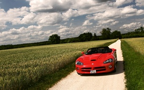 Picture field, clouds, red, nature, Dodge, Viper, Dodge, Viper, SRT 10