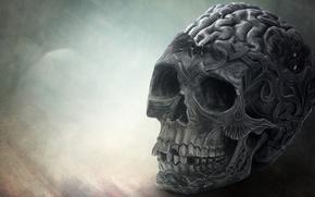 Picture death, skull, brain
