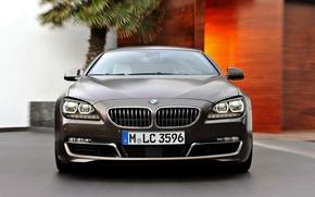 Picture Auto, BMW, Machine, Boomer, Logo, Grille, BMW, The hood, Lights, 6 Series, Windshield