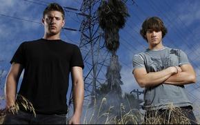 Picture actor, male, Supernatural, Jensen Ackles, Supernatural, Sam, Dean, Jensen Ackles, over the padalecki jared, Jared …