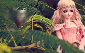 Picture leaves, toy, doll