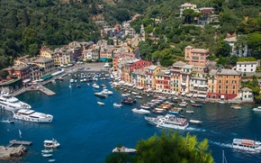 Picture Italy, Portofino, home, panorama, Bay, sea, yachts, boats, landscape