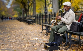 Picture street, saxophone, music, musician