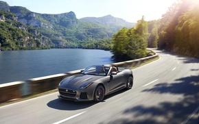 Picture Jaguar, Road, Convertible, Grey, F-Type, 2016, SVR