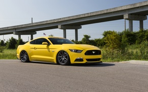 Picture Mustang, Ford, Wheels, Velgen, Bagged, VMB9