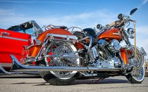 Picture style, Harley Davidson, bike