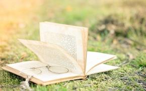 Picture grass, nature, blur, glasses, book, page
