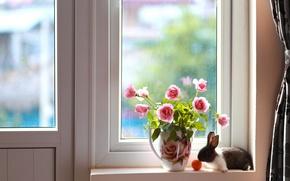 Wallpaper roses, bouquet, rabbit, window, pitcher