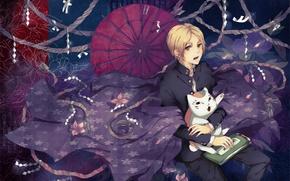 Picture cat, magic, pattern, umbrella, rope, cloak, natsume yuujinchou, the Natsume book of friendship, takashi natsume, …