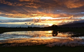 Picture the sun, clouds, rays, sunset, lake, swamp, the evening, after the rain