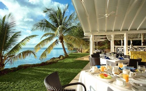 Picture beach, palm trees, restaurant, views of the ocean